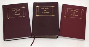 WOY-Bible-